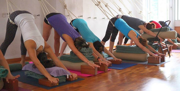 Yoga Intensive (Introductory Level)