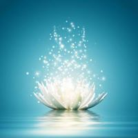 What is Reiki An Introductory Workshop With Shoko Dubiski