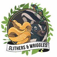 Slithers and Wriggles  Vigo Summer Fete