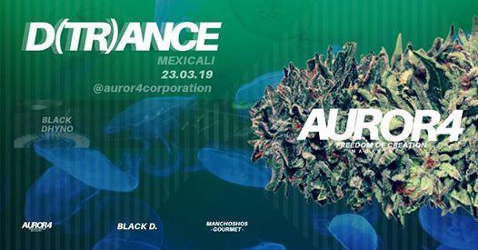 D(tr)ance  Auror4 - Black Dhyno  Mexicali Bc