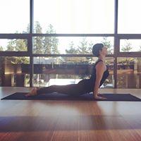 Hatha Sunrise 6-week morning yoga series