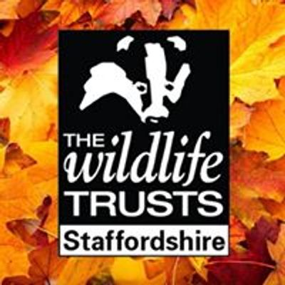 Family activities - Staffordshire Wildlife Trust