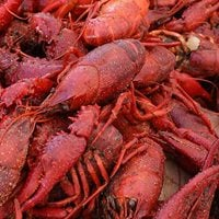 Crawfish Boil at Rockfish Richardson