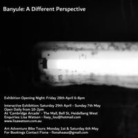 Banyule A Different Perspective - Exhibition Opening Night