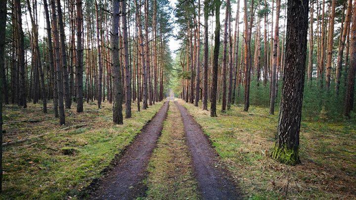 Lets hike in the footsteps of Bohumil Hrabal
