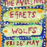 The Avulsions  Egrets  WOLFS