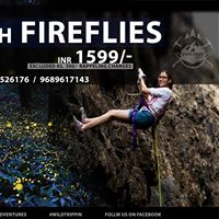 Camping With Fireflies at Sandhan Valley