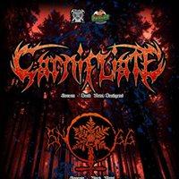 Concert Carnifliate [SI] Sngg [SI] la Satu Mare