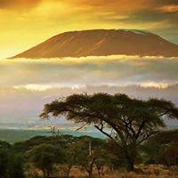 Hike 146Mt Kilimanjaro climb I Marangu route
