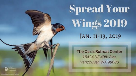 Spread Your Wings 2019 Annual Goal Setting Weekend Retreat At The