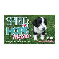 Spirit of Hope Rescue