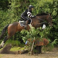 Hursley Pony Club Open Hunter Trial