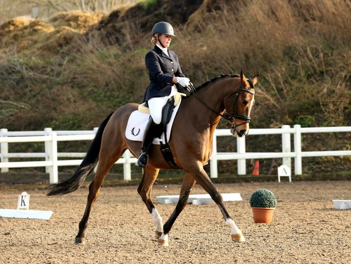 Cara Hayward Dressage Clinic