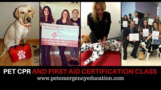 Pet CPR and First Aid Certification Fundraiser class