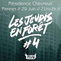 Chevreuil  Les jeudis en fort 4