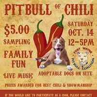 Pitbull of Chili