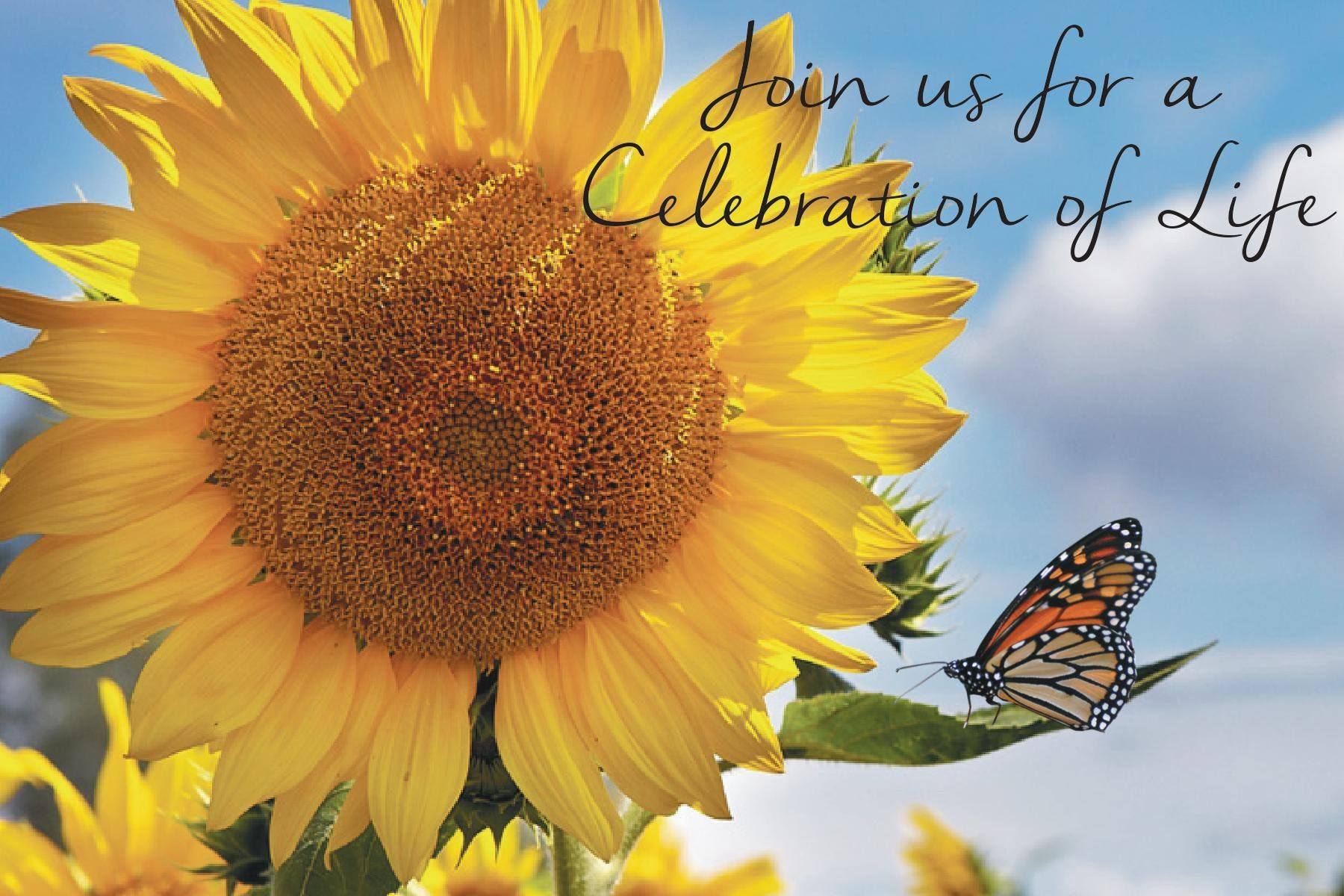 Celebration of Life Butterfly Release and Candle Light Ceremony