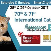 MFGC 70th &amp 71st International Cat Show