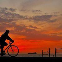 Tampa Urban Ride