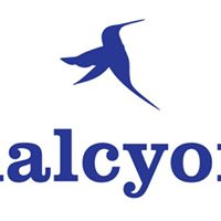 Halcyon returns to NaplesFt. Myers area