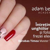 Curs Tehnici de ntreinere a unghiilor false Satu Mare