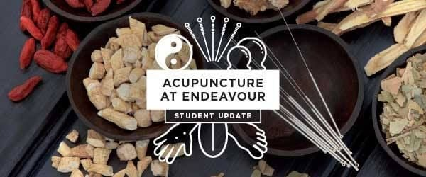 Chinese medicine webinar Accuracy in point location