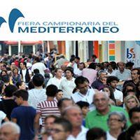 Piergi infissi espone in fiera del mediterraneo sul viale for Piergi infissi palermo