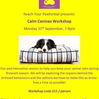Calm Canines Workshop