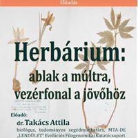 Takcs Attila Herbrium ablak a mltra vezrfonal a jvhz