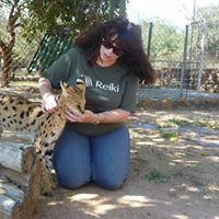 Animal Reiki Cert. Class- Lvl 1(4 classes) w Kimberly Cotter
