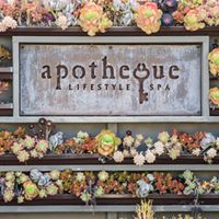 Free Live Music Food and Drinks at Apotheques Grand Opening