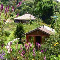 Retiro de Yoga Corpus Christi Zen no Goa Spa em Mau