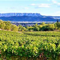 Wine Makers Dinner Luberon &amp Ventoux