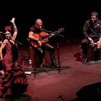 Live Flamenco Show With DancersSingers From Spain May 4th
