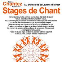 Stage de Chant et Circle Song