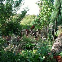 Hillside Garden - Ballarat