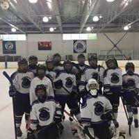FREE Girls Hockey Clinic