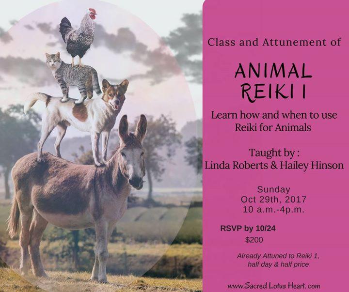 Animal Reiki 1