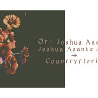 Or  Joshua Asante  Country Florist &gt Capitol View Studio