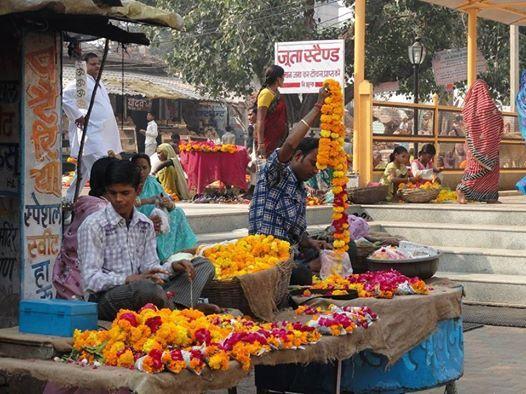 Gujarat Festivalreis met Sibren Oosterhaven
