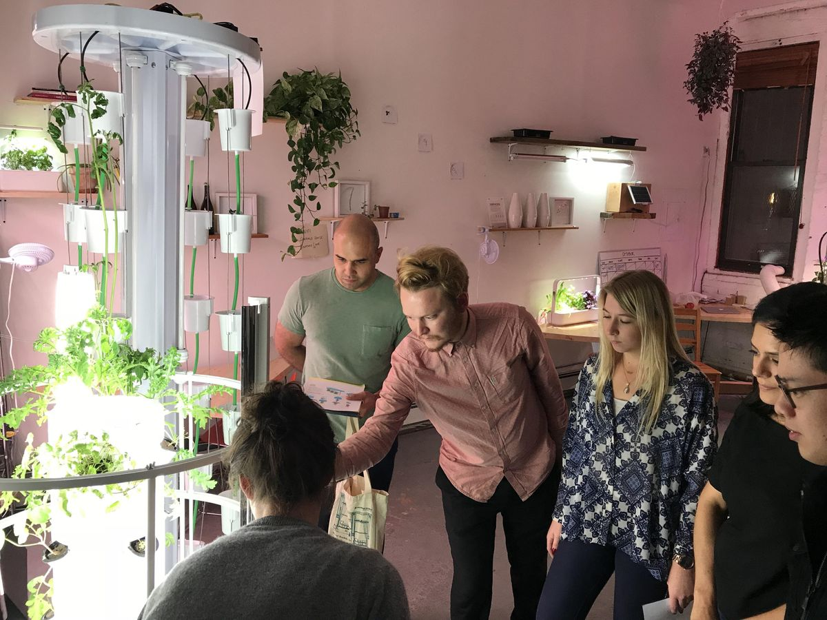 Intro to Hydroponics & Urban Agriculture in NYC