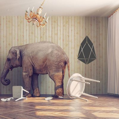 Death is the Big Elephant in the Room