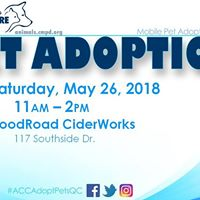 Animal Adoption Event
