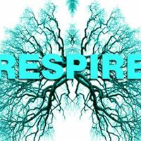 Renascimento - Respirao Circular