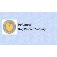 Volunteer Dog Walker Training