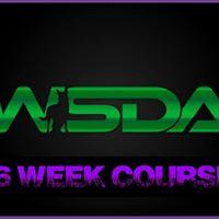 WSDA 6wk Scentwork Course
