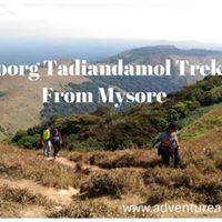 One Day Trek From Mysore - Coorg Tadiandamol Peak