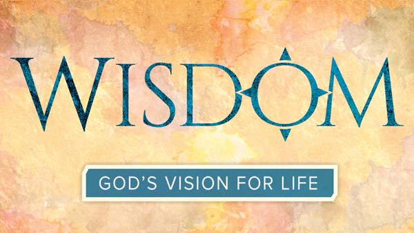 Easter Wisdom Gods Vision for Life by Jeff Cavins et al