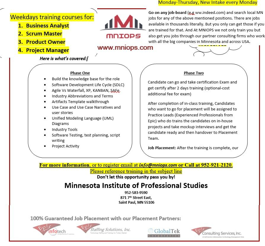 Healthcare Business Analyst Training At Saint Paul Saint Paul