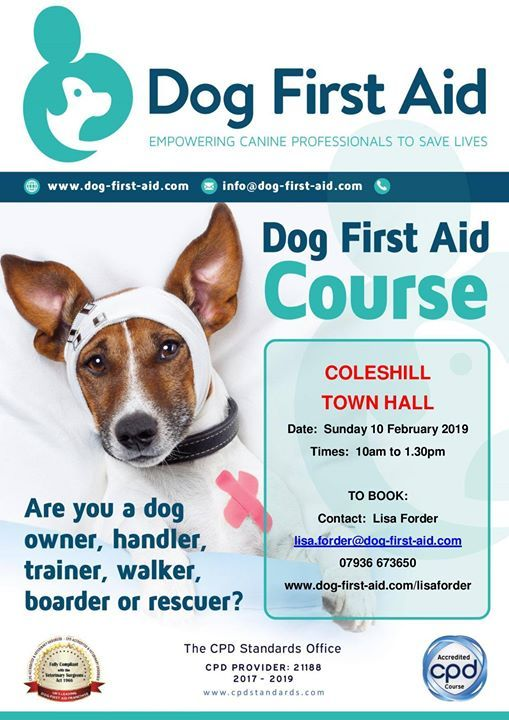 Dog First Aid Course - Coleshill